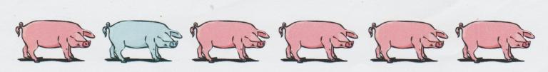 Fête du cochon 2